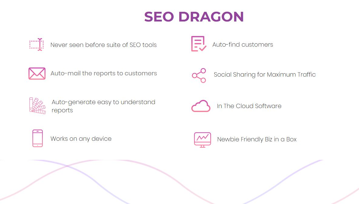 SEO Dragon FE Review